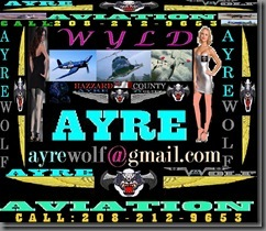 WyldAyre Header Large