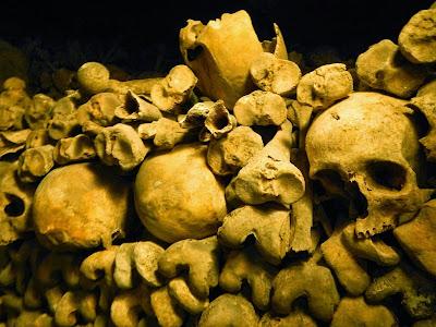 skull pile.JPG