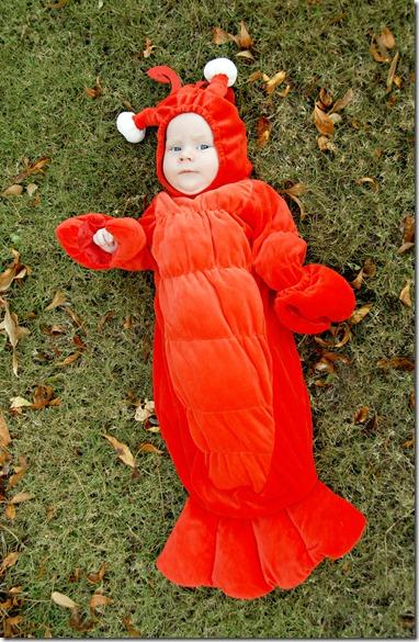 justin lobster