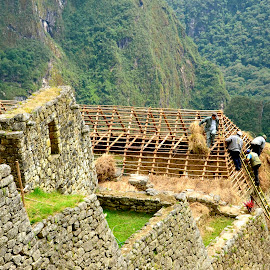 Roofing a home in the Andes by Tyrell Heaton - Buildings & Architecture Homes ( roofing a home in the andes )