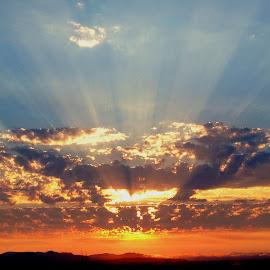 Eola hill by Kaoru Arai-Lewman - Landscapes Sunsets & Sunrises
