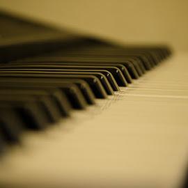 Piano by Fitria Ramli - Artistic Objects Musical Instruments ( music, keyboard, piano, musical instrument, nikon, closeup,  )