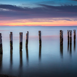 Cape Pilings Sunrise by Ed Esposito - Landscapes Sunsets & Sunrises ( gentle, ocean, sunrise, morning, pilings, cape cod, soft )