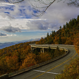 Autumn hues on Linn cove Viaduct by William Bentley Jr. - Buildings & Architecture Bridges & Suspended Structures