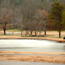 Frozen Waterbed by Chittal Pujara - Landscapes Travel ( water, fall colors, hut, frozen lake, trees )