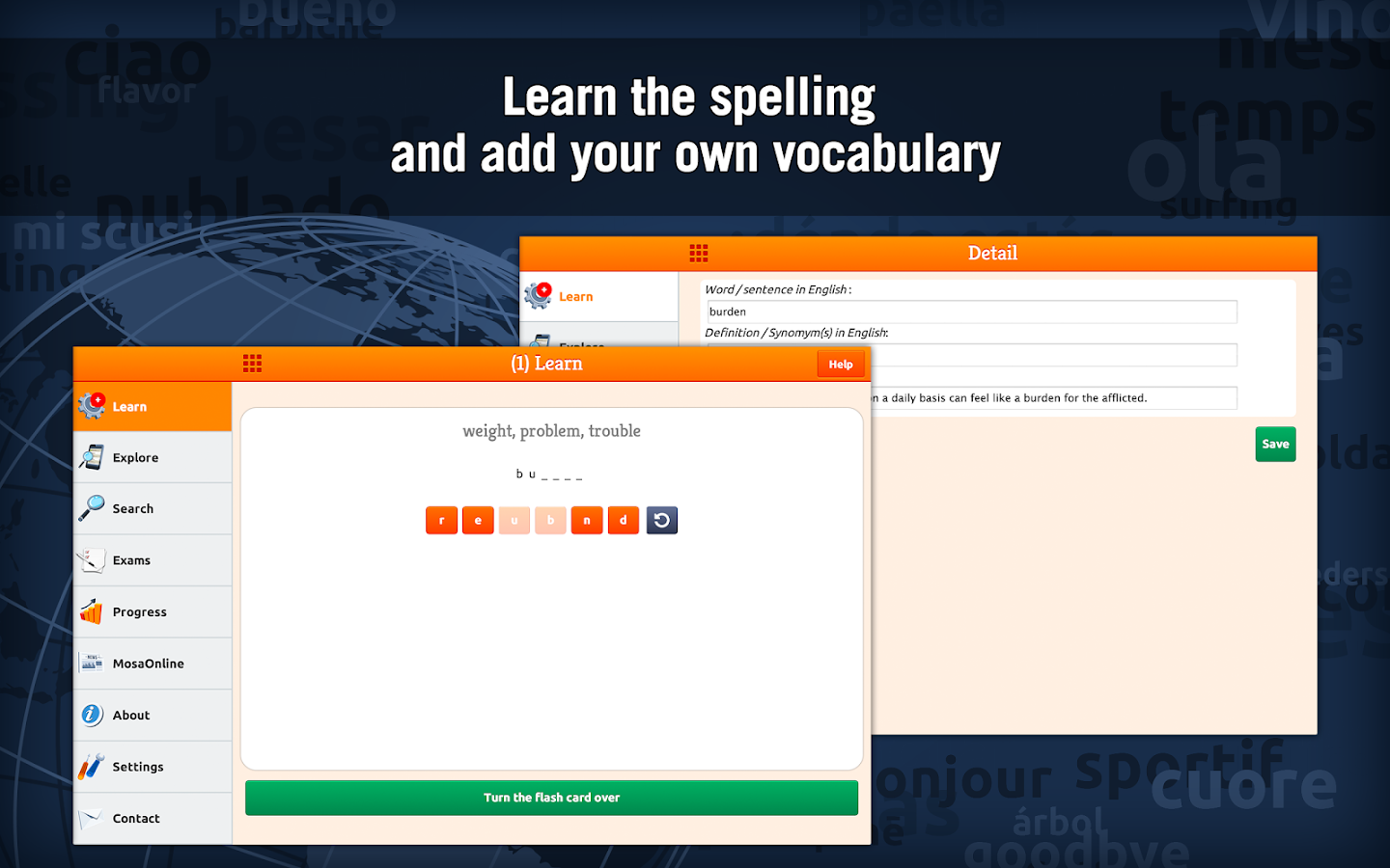 Learn TOEFL Vocabulary Screenshot 14