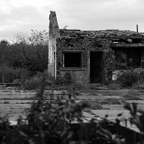 Abandoned Farm by Bearded Egg - Uncategorized All Uncategorized
