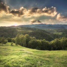 Pestera hills by Andrei Grososiu - Landscapes Mountains & Hills ( pestera romania, hills, sunset, forest, light )