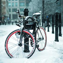 Winter Bike by Piotr Owczarzak - Transportation Bicycles ( uk, shoreditch, winter, london, street, snow, bicycle,  )