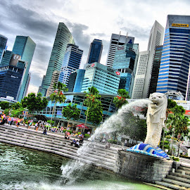 Singapore & The Merlion by Natasha Giles - City,  Street & Park  Skylines ( singapore merlion, skyline, park, singapore city, merlion, holidays, city park, singapore, singapore river )