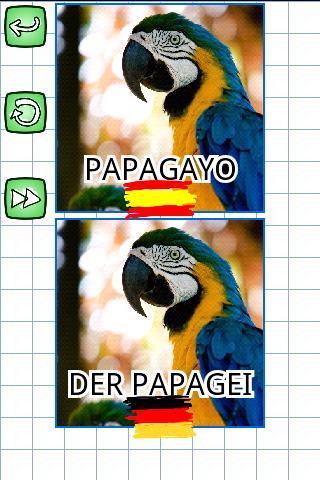 困惑動物: スペインドイツ語
