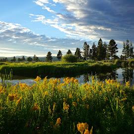 Mirror Ponds - Sunriver, Oregon by Barb Gates - Landscapes Sunsets & Sunrises ( clouds, oregon, sunset, reflections, pond )