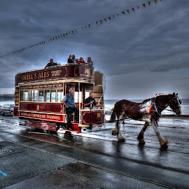 Douglas Horse Tram by Graeme Merrick - Transportation Other ( horse trams, douglas, isle of man, douglas horse trams, iom )