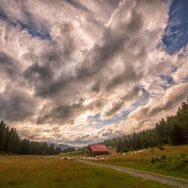 Summer weather by Stanislav Horacek - Landscapes Weather