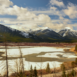Vermillion Lake by Joseph Law - Landscapes Waterscapes ( blue sky, in banff national park, bushes, rocky mountain, trees, snow on the mountain, vermillion lake )