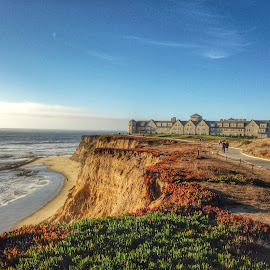 Half Moon Bay by Cesar Palima - Instagram & Mobile iPhone