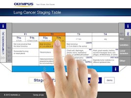 Screenshot of Lung Cancer Staging Table