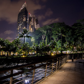 Night walk by Aleksey Maksimov - Landscapes Travel ( palm trees, walk, buiding, singapore, tropics,  )