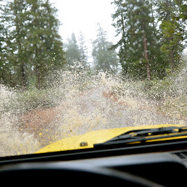 Off-Roading, Mendocino National Forest by Kathleen Koehlmoos - Novices Only Sports ( four-wheel drive, 4x4, splash, splashing, jeep, 4 x 4, mud puddle, off-roading, four-wheeling )