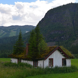 Abandoned house by Olav Aga - Buildings & Architecture Homes ( roof, mountains, hemsedal, wooden house, trees, valley, abandoned house, norway,  )