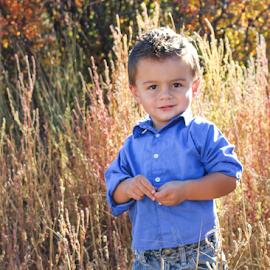 TK 2014 #5 by Stacey Cannon - Babies & Children Child Portraits ( fall, cute, handsome, boy, portrait )