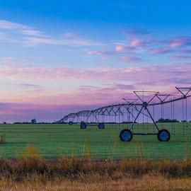 by Richard Turner - Landscapes Prairies, Meadows & Fields