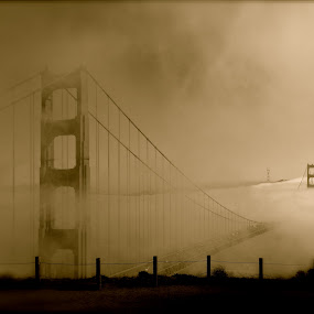 Floating Bridge by Jeff Steiner - Buildings & Architecture Bridges & Suspended Structures ( golden gate bridge, fog, san francisco )