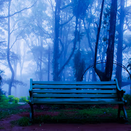 Hope by Sreejith Babu - City,  Street & Park  City Parks ( hills, nature, landscape, morning, karnataka, misty )