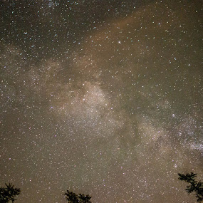 The Milky Way  by Stephanie Hampton - Landscapes Starscapes ( milkyway, sky, oklahoma, night )