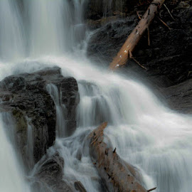 LaPlata Canyon, CO Waterfall by Jamie Moon - Nature Up Close Water ( may 2014 )
