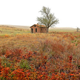 Fall On The Prairie by Kathy Suttles - Landscapes Prairies, Meadows & Fields