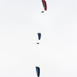 Paragliders in the sky by Зоран Милојковић - Sports & Fitness Other Sports ( fly by, sky, paraglider, bright, white, three, cloudy, paraglajder, light, in )
