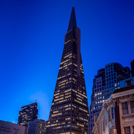 Transamerica at Sunrise by Julio Gonzalez - Buildings & Architecture Office Buildings & Hotels