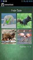 Screenshot of Animal Quiz