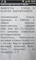 Screenshot of Brockhaus and Efron Dictionary