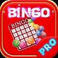 Free Bingo Game -In Xmas Theme APK for Lenovo