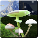Magic Mushrooms LWP HD icon