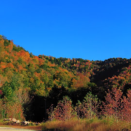 Pan in Leslie County Kentucky by Paul Mays - Landscapes Mountains & Hills (  )
