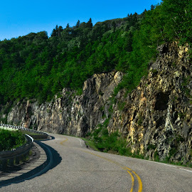 Cabot Trail by Carrie Anne - Landscapes Mountains & Hills ( hills, mountians, cabot trail, trees, road )