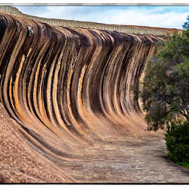 by Allyn Cooper - Landscapes Caves & Formations ( wave rock, hyden, western australia )
