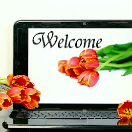 Welcome! by Dipali S - Typography Captioned Photos ( optical, optics, illustration, motivation, type, decor, inspiration, calligraphy, card, place, template, element, text, creative, letter, font, art, label, calligraphic, sign, frame, poster, word, typography, letters, headline, graphic, ornate, decorative, object, digital, captioned, title, words, quote, inscription, classic, note, banner, typographic, abstract, icon, decoration, vintage, advertisement, photo, message, motivational, typo, background, device, artistic, design )