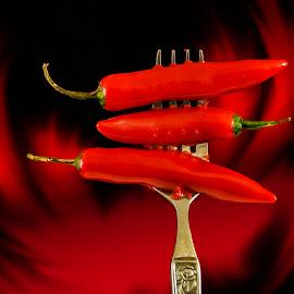 by Elsa van Dyk - Food & Drink Ingredients