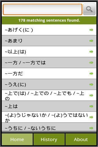 Japanese Grammar N1 Lite