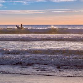 by Thomas Larkin - Sports & Fitness Surfing ( oceanside, surfing, surfer, california coast, oceanside california )