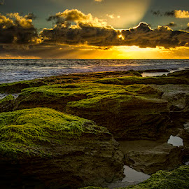 by Ron McGrechan - Landscapes Beaches ( beach sunset ocean rocks water )