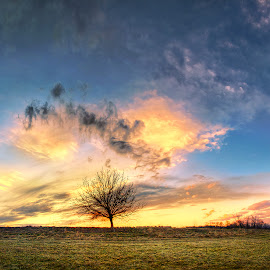 Hungarian skies pt.50. by Zsolt Zsigmond - Landscapes Sunsets & Sunrises ( clouds, sky, tree, hdr, wide, panorama )