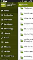Screenshot of Grasscity Community