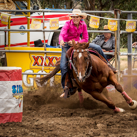Determined by Gary Beresford - Sports & Fitness Rodeo/Bull Riding ( rider, corner, horse, rodeo )