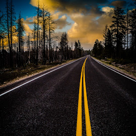 Drive at Sunset by Paulo Peres - Transportation Roads ( double yellow line, utah, burnt, road, bryce canyon )