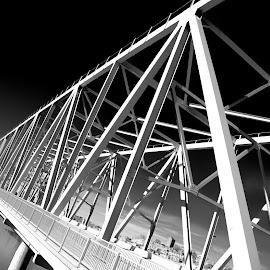 The Bridge  by Willie Franklin - Buildings & Architecture Bridges & Suspended Structures ( cincinnati )
